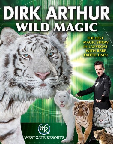 Wild Magic - Dirk Arthur